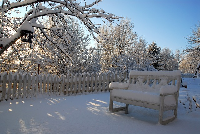 winter backyard with fence and snow